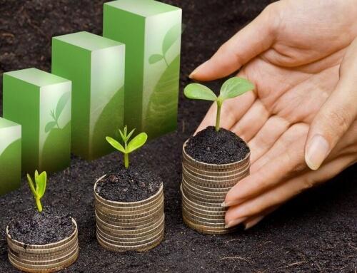 Fleksible lån til mindre virksomheder: iZettle Advance